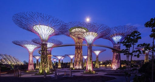 Explore Gardens by the Bay on your Singapore Tour