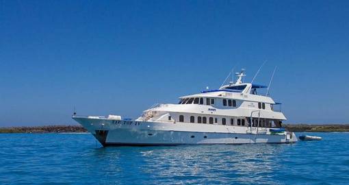 Enjoy your Galapagos cruise on the M/Y Tip Top IV