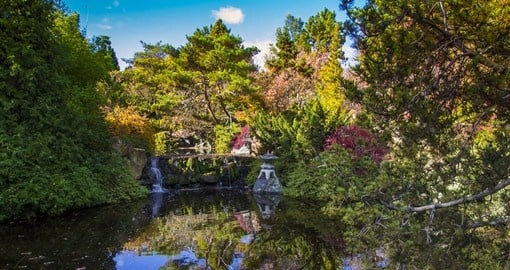 Visit the exotic and lush Botanical Gardens in Hobart city