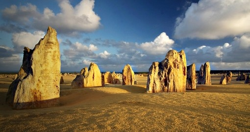 The Pinnacles in the Western Australian desert are visited on your Australian tours