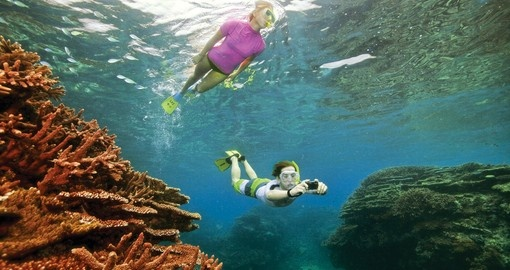 Discover the sea and experience snorkeling on your next trip to Australia.