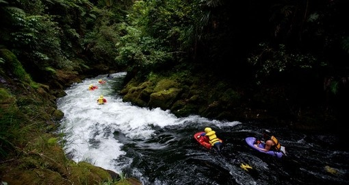 Sledge along the Kaituna River during your New Zealand vacation.