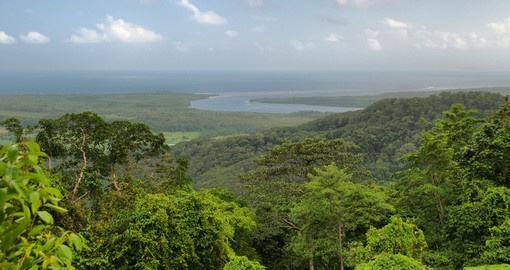 Find adventure in Daintree National Park on your Australia Vacation