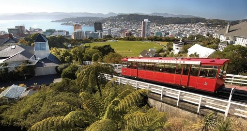 Your New Zealand Vacation concludes in the charming capital city of Wellington
