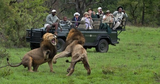Experience Sabi Sabi Game Drive during your next South Africa vacations.
