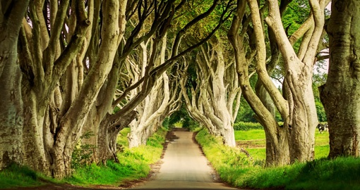 Northern Ireland is the filming location for many scenes in Game of Thrones