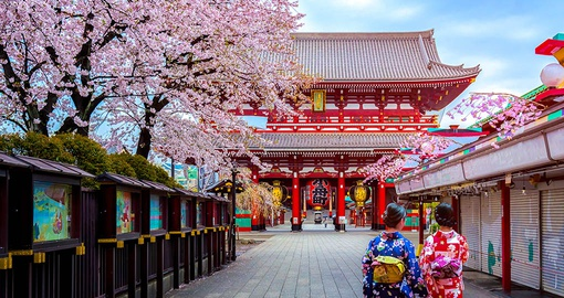 Take in the history of Edo on your  Japan Tour