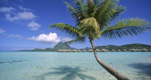 Relax and bathe in the sun on the beaches of the Bora Bora Pearl Beach Resort during your next Tahiti Vacation.