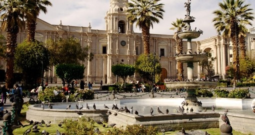 Stroll the streets of Arequipa on your Peru Tour
