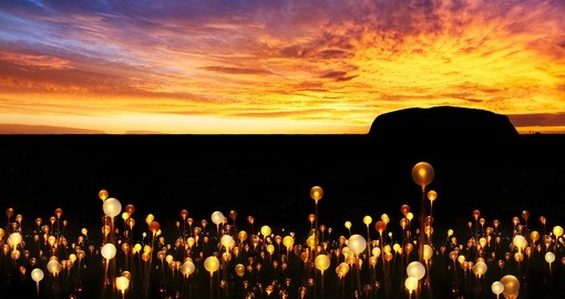 Experience the Heart of Australia with the Field of Light at Uluru during your Australia Vacation