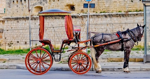 Horse-drawn carriage for tourists