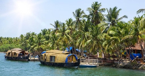 Visit the Backwaters on your India Tour