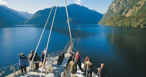 Spot some wildlife in Doubtful Sound during your next New Zealand tours.
