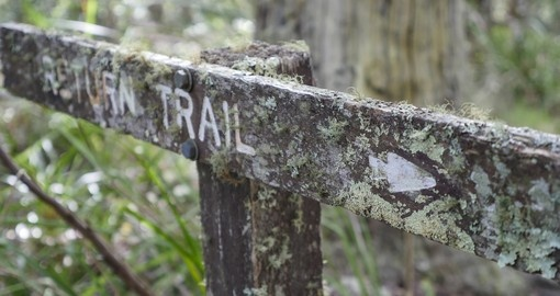 Bush Trail Sign