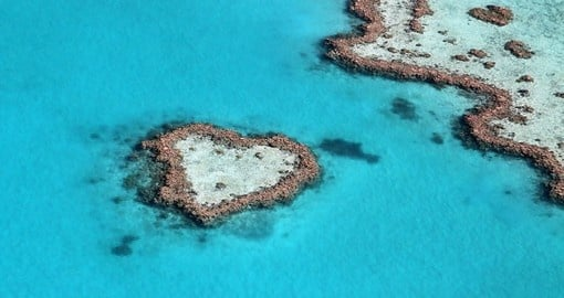 Explore the Heart Reef, Great Barrier Reef on your next Australia vacations
