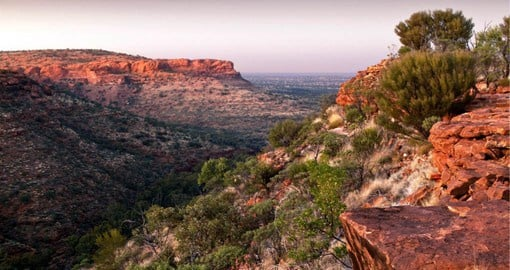 Kings Canyon is a majestic destination featuring towering sandstone walls and palm-filled crevices