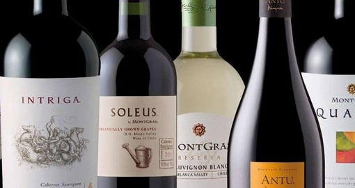 Taste the variety of red and white wines on your Chile vacation