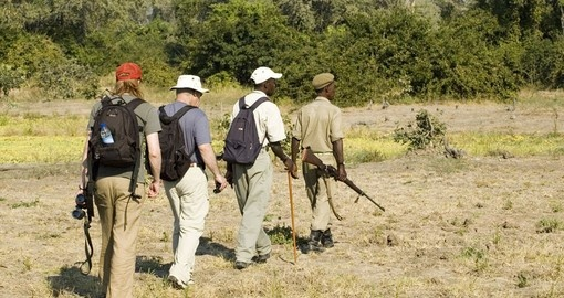 A walking safari in South Luangwa National Park is always a great option on Zambia safaris.