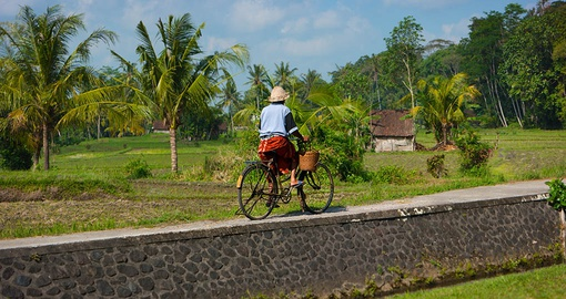 Cycle the same routes as locals on your Bali vacation