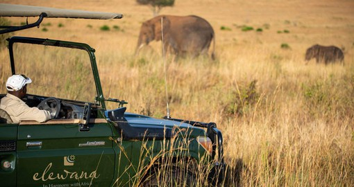Be awed by the finest wildlife viewing in the world in the Masai Mara