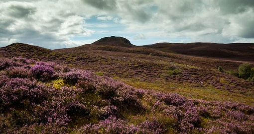 Stroll over the moors on your Scotland tour