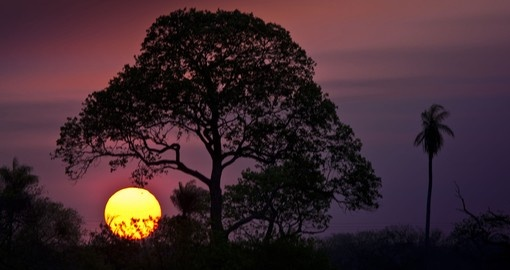 Watch the sunset over the Pantanal on your trip to Brazil