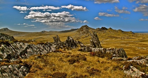 The rugged peat terrain, Falkland Islands