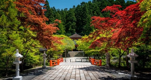Include colourful Koyasan on your Japan Tour