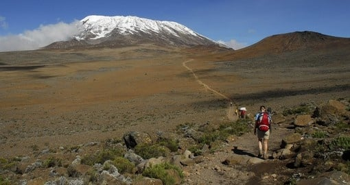 On the slope of Mount Kilimanjaro in Tanzania
