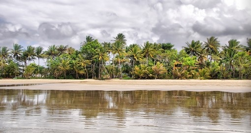 Walk on the Mission Beach in Tropical Queensland on your next Australia tours.