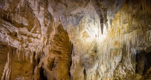 Your New Zealand vacation packages visits the Ruakuri Cave and Glow Worm Grotto in Waitomo