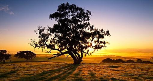 Sun rises over the Clare Valley, South Australia