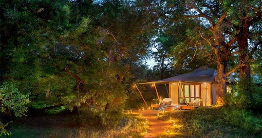 Your South Africa vacation features a 4 day stay at &Beyond Ngala Tented Camp.