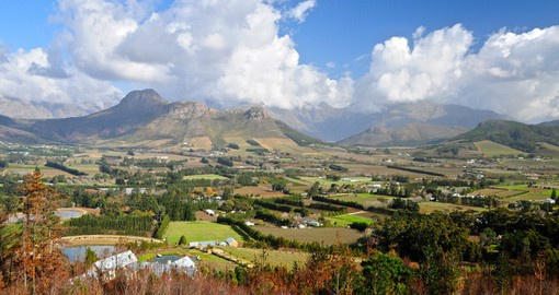 Visit magnificent Vineyards of Cape Winelands during your next South Africa tours.