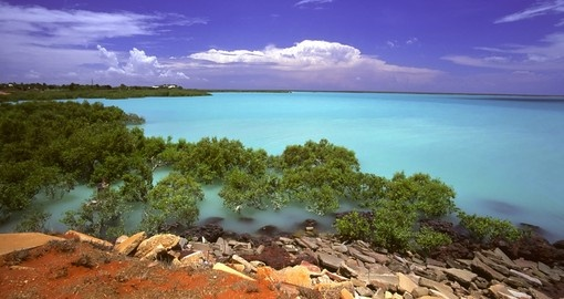 Explore Roebuck Bay and experience an amazing sights on your next trip to Australia.