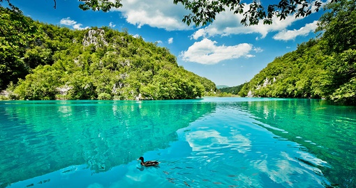 Experience Plitvice Lakes National Park  on your Croatia Tour