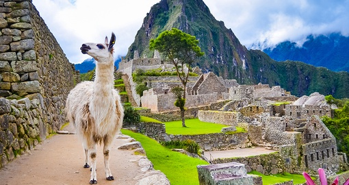 Machu Picchu is one of the world's ultimate bucket list destinations