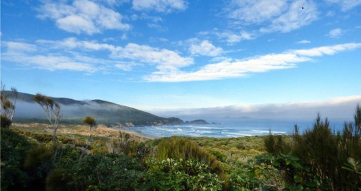 Discover magical panoramic view of Coastal in Stewart Island during your  New Zealand vacation.