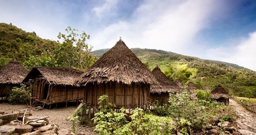 A Traditional Village in Papua New Guinea