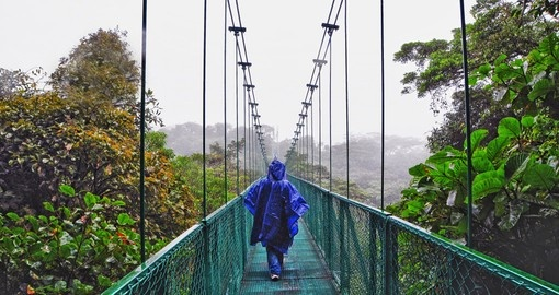 Hike the cloud forest on your trip to Costa Rica