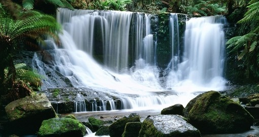 Horseshoe Falls at Mt Field National Park