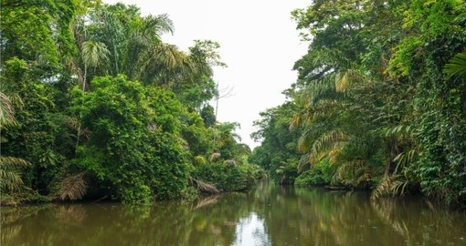 Your Costa Rica vacations visits Tortuguero National Park