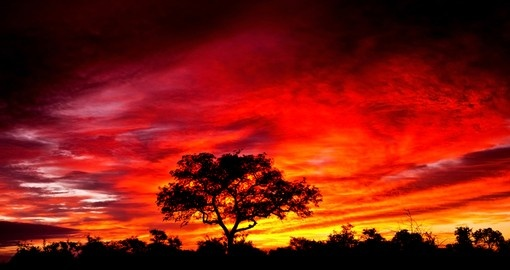 An African sunset in Kruger National Park is a sight to behold on all South African safaris.