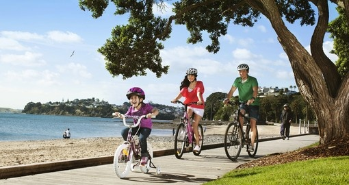 Experience boardwalk Cycling during your next trip to New Zealand.