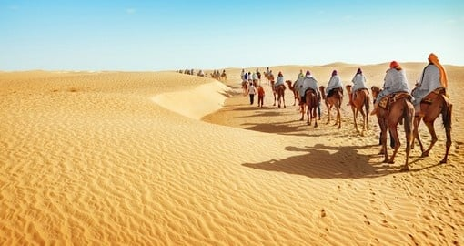 Explore  Sahara Desert on the Camel Train during your next trip to Tunisia.