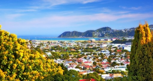 Discover the beautiful city Wellington on your next New Zealand vacations.