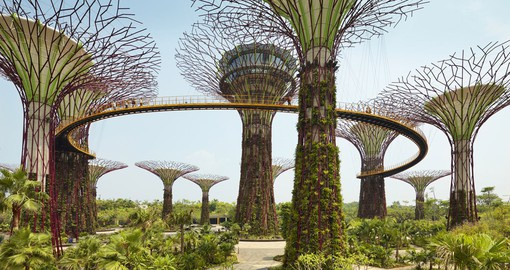 Breathtaking gardens by the bay in Singapore.