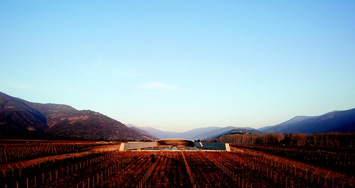 Chile is home to many romantic vineyards and scenery