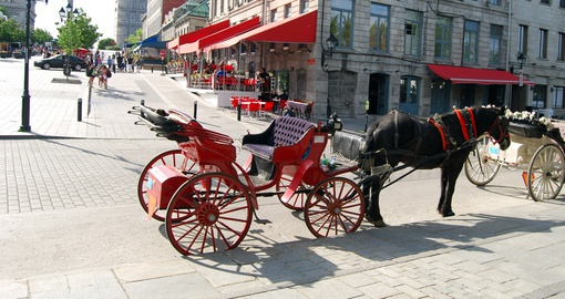 Horse and Cart Montreal