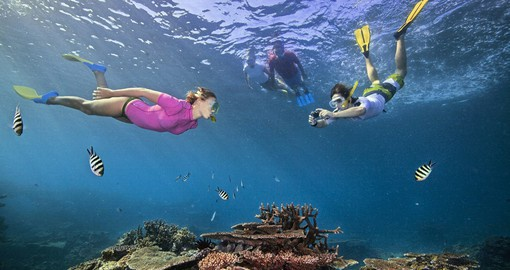Explore the Great Barrier Reef on your trip to Australia